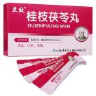 立效 桂枝茯苓丸 4克×6袋