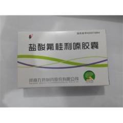 盐酸氟桂利嗪胶囊(九势)