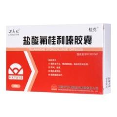 盐酸氟桂利嗪胶囊(桂克)