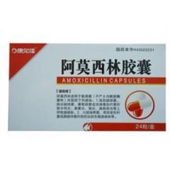 阿莫西林胶囊(康尔)