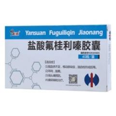 盐酸氟桂利嗪胶囊(修正药)